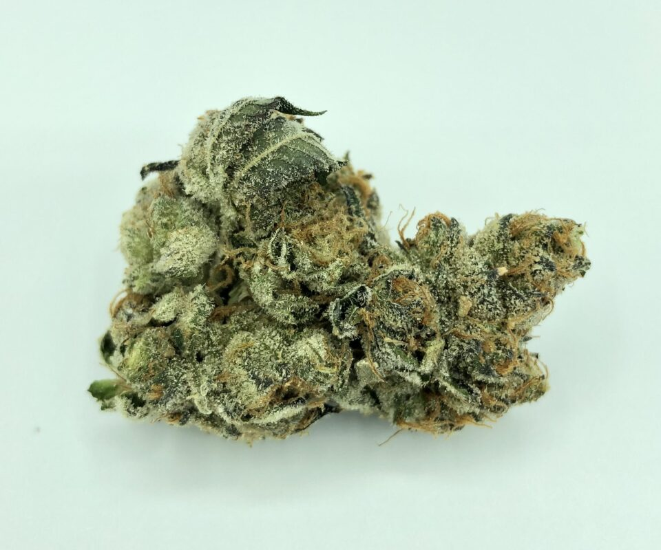 Girl Scout Cookies weed